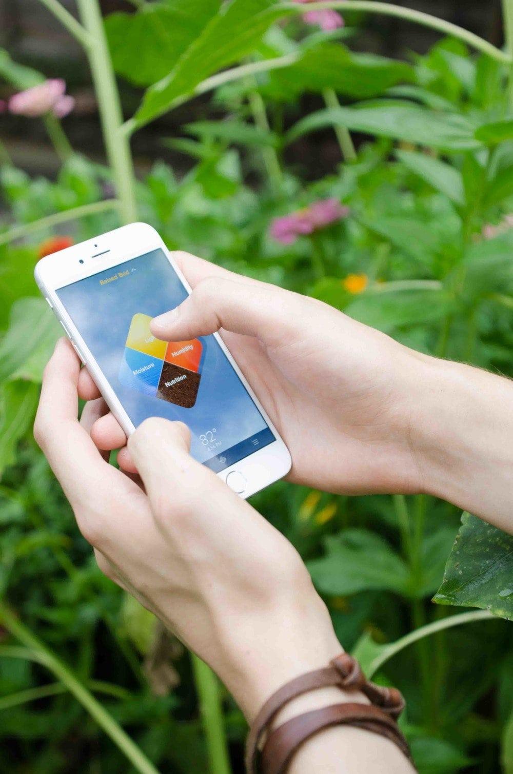 Edyn garden sensor technology that will change the way you work in the garden.