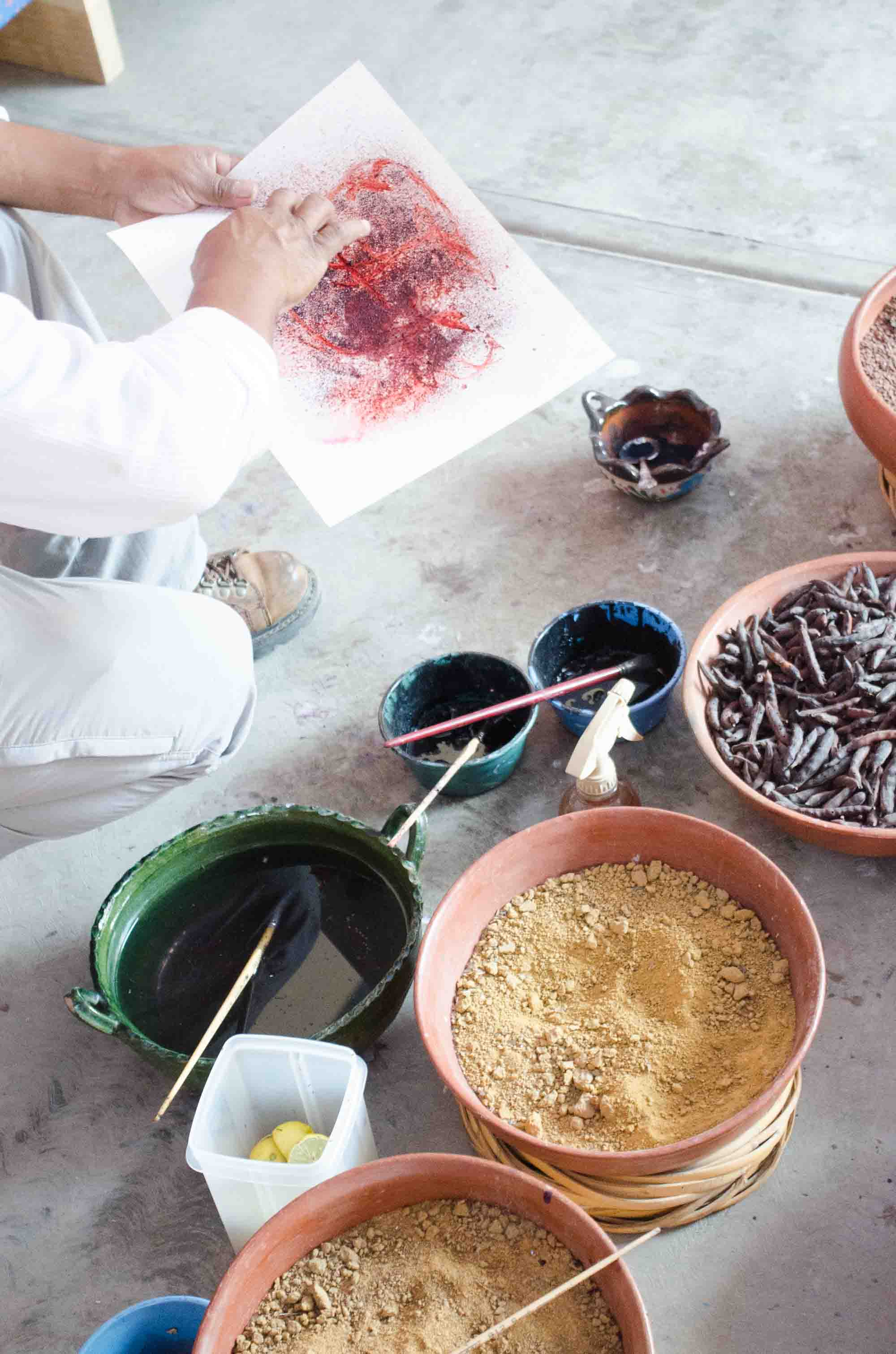 Natural plant dyes in Oaxaca, Mexico