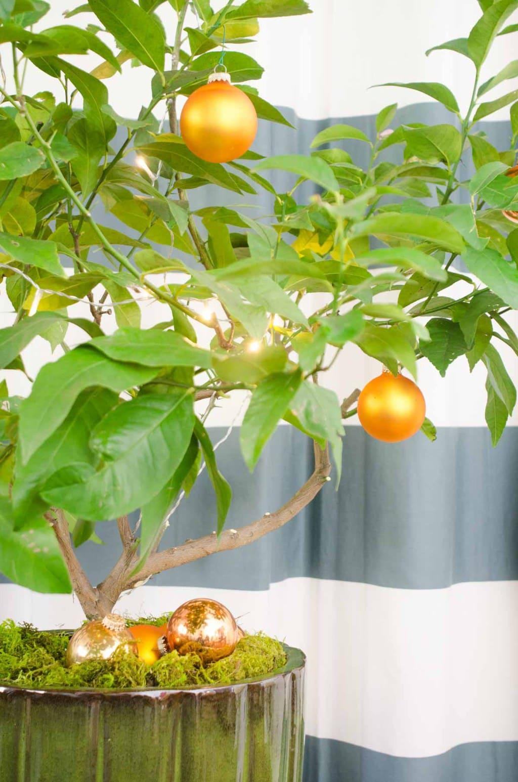 Citrus Christmas tree, holiday decor ideas on @thouswellblog