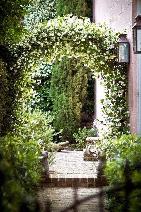 Climbing star jasmine creates an archway in a courtyard garden via @thouswellblog