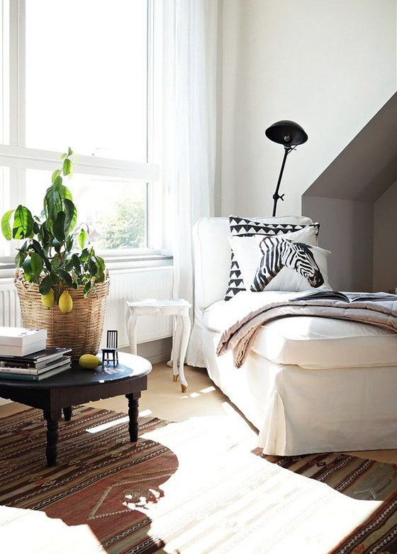 Chaise with potted citrus tree, how to care for indoor citrus trees on Thou Swell @thouswellblog
